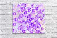 Purple Spring Flowers  Acrylic Print