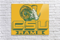 vintage colorado state university rams wood sign  Acrylic Print