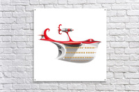 Avione Pelikanum Solo  Acrylic Print
