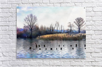 Lago di Chiusi Tuscany  Acrylic Print