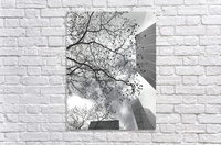 NYC Placement  Acrylic Print