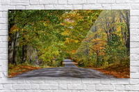 Fall Colors over a Country Road  Acrylic Print