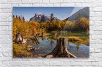 Vermilion Lakes Pond IMG_7045   Acrylic Print