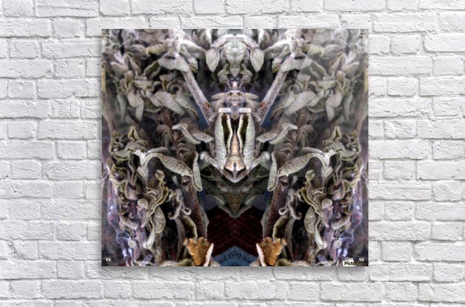 KUNG FU  Acrylic Print