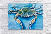 Louisiana He Soft Shell Crab  Acrylic Print
