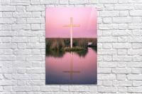 Double Crossed  Acrylic Print