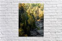 P9220119  Acrylic Print