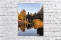 image  Acrylic Print