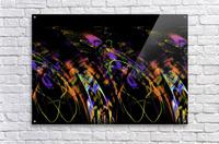 FLY FLUX  Acrylic Print