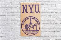 1950s NYU Art  Acrylic Print