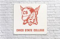 1950s Chico State College Wildcat Art  Acrylic Print