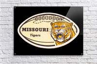 1965 Missouri Tiger Football Art  Acrylic Print