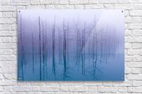 Misty Blue Pond  Acrylic Print