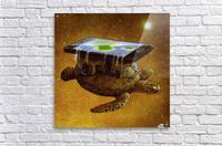 flat world  Acrylic Print