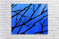 Ultramarine Forest Winter Blues II  Acrylic Print