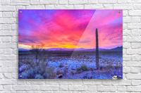 Sonoran_sunset  Acrylic Print