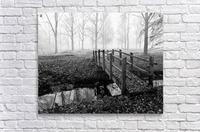 Misty Day  Acrylic Print