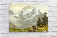 Snowcaps  Acrylic Print
