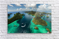 Green paradise  Impression acrylique