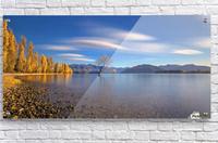 Autumn in Lake Wanaka  Acrylic Print