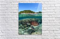 Along shore  Acrylic Print