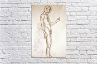 Contemplation Figure Study  Acrylic Print