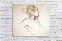 Female Profile Study  Acrylic Print