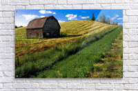 Old Barn In A Field  Acrylic Print