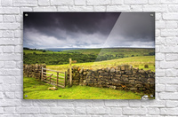 Stone Fence, Yorkshire, England  Acrylic Print