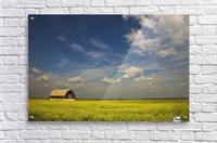 Alberta, Canada; An Old Barn In A Field  Acrylic Print