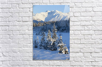Scenic View Of Chugach Mountains And Snowcovered Landscape, Southcentral Alaska, Winter  Acrylic Print