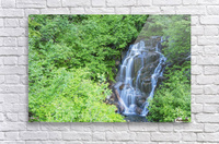 Stevens creek waterfall mount rainer national park near seattle;Washington united states of america  Acrylic Print