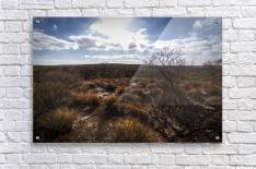Kalbarri Canyon  Acrylic Print