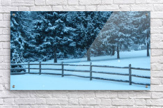 Winter Snow  Acrylic Print
