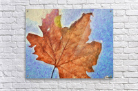 Autumn Leaves Macro 3 Abstract 3  Acrylic Print