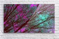 bloomingInfeb  Acrylic Print