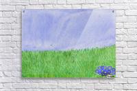 field of grass  Acrylic Print