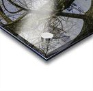Looking Through Acrylic print