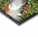 AutumnEagle Acrylic print