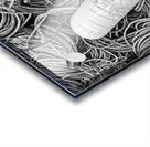 Rope & Buoys - APC-297 Acrylic print