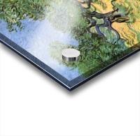 Olive Trees by Van Gogh Acrylic print