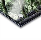 Rainforest Impression Acrylique
