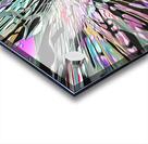 9A771885 2A83 4CAB A800 AC45AB4C66B4 Acrylic print