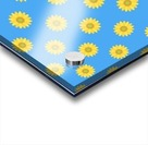 Sunflower (36) Acrylic print