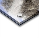 Matin glace- Iced morning Acrylic print