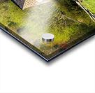 Looking Through the Web Acrylic print