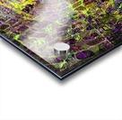 5F4780C8 AF40 414A A97A B966BFB11DF5 Acrylic print