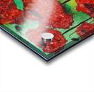 Thinking of Poppies Acrylic print
