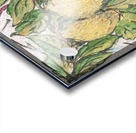 Sorrento_ fresco Acrylic print