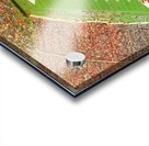 1985 nc state wolfpack carter finley stadium raleigh north carolina college football aerial photo Acrylic print